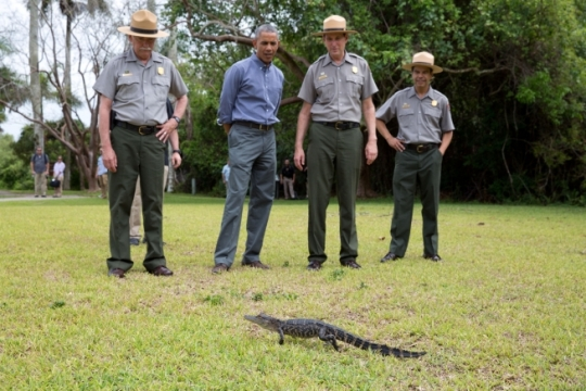 President Barack Obama and U.S. Park Service rangers view a small alligator during a tour at Everglades National Park, Fla., on Earth Day, April 22, 2015. (Official White House Photo by Pete Souza)