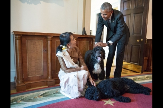 President Barack Obama and Aung San Suu Kyi, State Counsellor and Minister of Foreign Affairs of Myanmar, visit with Obama family pets Bo and Sunny in the Cabinet Room of the White House following their bilateral meeting, Sept. 14, 2016. (Official White House Photo by Pete Souza)